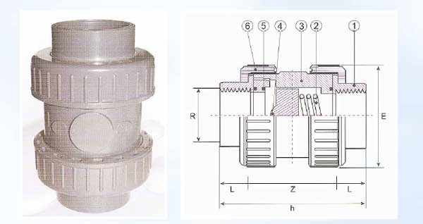 Female Threaded True Union Spring Check Valves (for water)